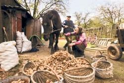 Antreprenoriatul reprezinta principala premisa pentru dezvoltarea mediului rural romanesc.