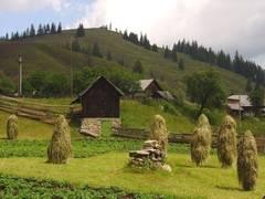 În ce priveşte proiectul declarării Ţării Haţegului ca destinaţie ecoturistică: Primarul din Densuş vrea informaţii precise