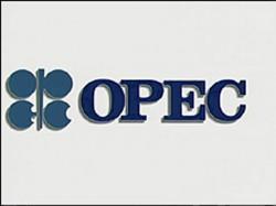 """OPEC a ajuns la cap?t de linie, nu mai este """"o entitate viabil?"""""""