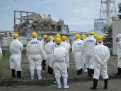 Oficiali din Fukushima: Nivelul radiaţiilor nu mai este periculos
