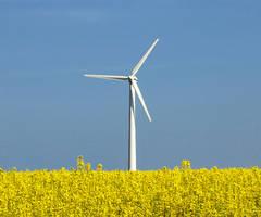"""Germania î?i pierde alia?ii în planul de 700 mld. euro de """"înverzire"""" a sectorului energetic"""
