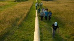 Pădurea pedagogică, 16 noi experienţe
