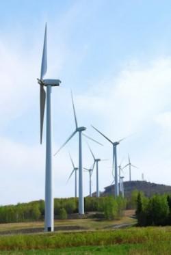 Energia eolian? s-a dezvoltat spectaculos în România în 2012