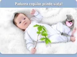 """Pentru al III-lea an consecutiv, """"Adopta un copac"""" este cauza de mediu a Bucharest International Marathon."""
