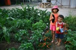 Fundația Life recrutează grădinari de ocazie pentru 21 martie