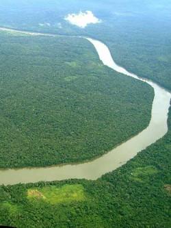 Padurea amazoniana a fost cartografiata in amanuntime