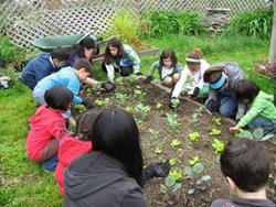Educarea tinerei generatii in spiritul protejarii mediului