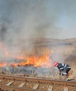Prevederi privind arderile de vegeta?ie