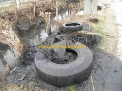 """Hunedoara: Un kilometru de luciu de apa """"sufocat"""" de zeci de tone de gunoaie a fost curatat de voluntari"""