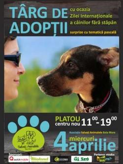 Targ de Adoptii - Baimarenii pot face adoptii, de Ziua Internationala a Animalelor fara Stapan