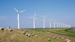 Iberdrola renunta la planurile de vanzare a proiectelor eoliene din Romania