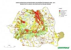 Greenpeace: In România dispar peste 3 hectare de pădure în fiecare oră.