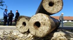 Firma Bioenergy incepe aprovizionarea cu biomasa pentru viitoarea centrala termica a Sucevei