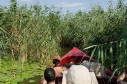 Amenzi pentru cei care încalcă regulile de navigaţie în Delta Dunării