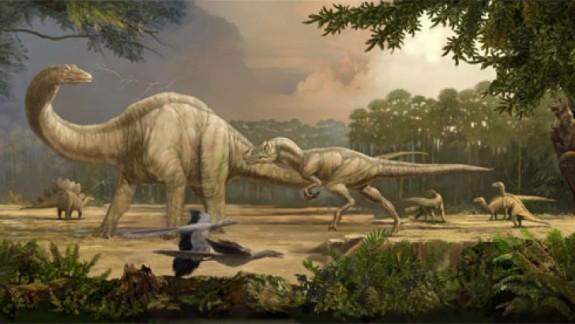 De ce au supravie?uit p?s?rile când dinozaurii au pierit?