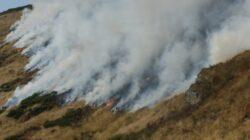 Harghita: Pompierii continua interventiile pentru stingerea incendiilor de padure