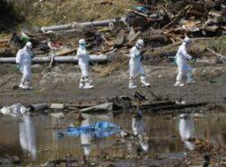 Ancheta accidentului de la Fukushima: Un fost sef din domeniul securitatii nucleare japoneze a fost audiat de catre politie