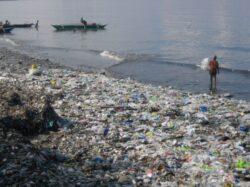 Un raport a UCLA solicita politici globale de combatere a poluarii oceanelor cu deseuri din material plastic