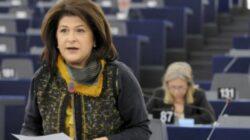 Guvernul Romaniei a aprobat Memorandumul de cooperare dintre Romania si Muntenegru, in domeniul protectiei mediului