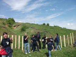 Plantatia de salcimi de la Osoiu, inconjurata de voluntari ecologisti