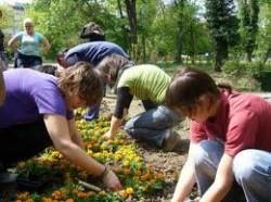 Doar 14% dintre români au făcut voluntariat, majoritatea - studenţi şi angajaţi cu studii superioare