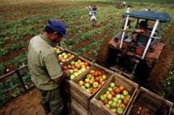 Agricultura bio ?i exploatarea gazului natural în jude?ul Suceava ar putea atrage investitori din Kazahstan