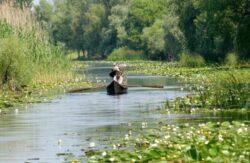 Vitezomanii din Delta Dunarii risca amenzi de pana la 1.000 lei