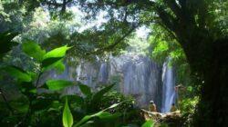 TURECO infiinteaza 10 noi intreprinderi sociale in ecoturism