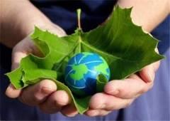 Energia verde î?i face sim?it? prezen?a pe pia?a spot