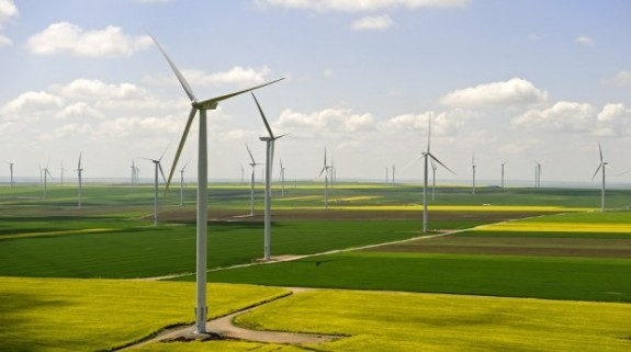 Google si Microsoft investesc in energie eoliana