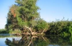 Targul Ecomediu va cuprinde conferinte internationale, pe teme de protectia aerului, apei si a solului