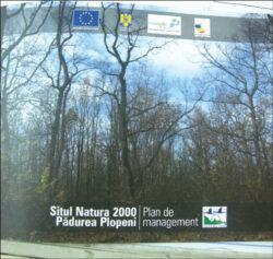 Planul de management pentru ocrotirea Padurii Plopeni