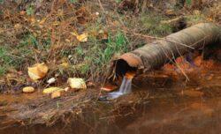 14 localităţi din judeţul Timiş se confruntă cu problema poluării cu nitraţi