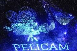 Workshop-uri inedite la Pelicam, Festivalul International de Film