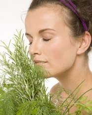 Plantele care te mentin tarana si plina de energie