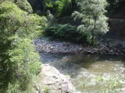 """Concluziile anchetei in cazul poluarii accidentale de pe raul Sebes, zona """"Elit"""". Amenda de 30.000 de lei pentru firma"""