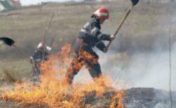Fermierii care incendiaza miristile fara acordul APM, pasibili de amenda