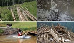 """Siturile """"Natura 2000"""" din Iasi, in atentia autoritatilor. Vezi programul din aceste luni"""