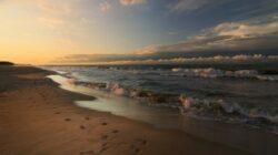 5 Iunie – Ziua Mondial? a Mediului: SOS oceanul planetar