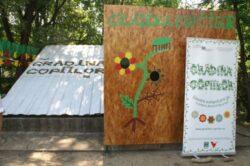 Grădina Copiilor: voluntariat și educație ecologică în Grădina Botanică București