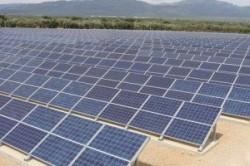 Au inceput lucrarile la parcul fotovoltaic din Sintereag