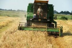 Banca Mondiala preconizeaza o criza alimentara din cauza schimbarilor climatice