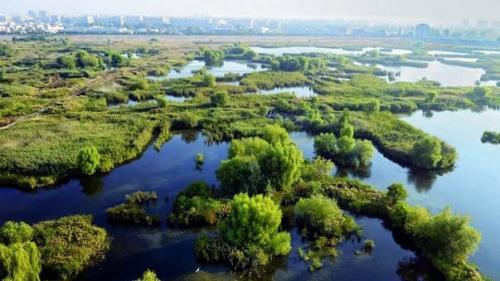 Banca Mondial? va realiza o strategie pentru Delta Dun?rii ?i Zona Metropolitan? Constan?a