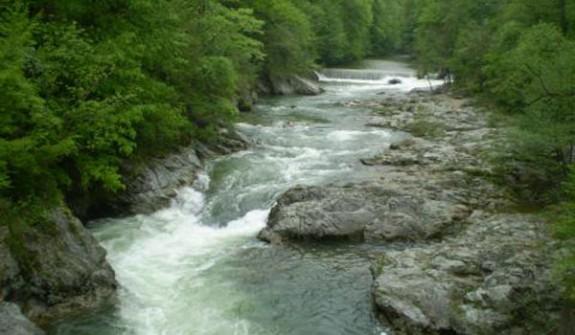 Masuri pentru conservarea Parcului Domogled - Valea Cernei