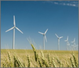 Chinezii de la Goldwind vor furniza 20 de turbine eoliene de 50