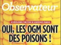 Rezultatele unui studiu al cercetatorilor francezi: Organismele modificate genetic sunt nocive