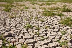 Conferinta ONU pe tema climei de la Doha s-a incheiat cu un acord care salveaza protocolul de la Kyoto
