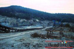 Pădure de fag prăbuşită în cariera minieră!  Complexului Energetic Oltenia va plăti daune!