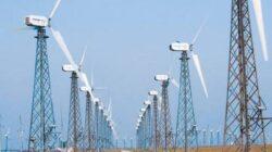Asociatia Romana pentru Energie Eoliana, despre reducerea schemei de sprijin pentru regenerabile