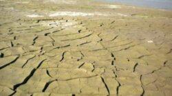 Incalzirea globala va desertifica campiile Romaniei
